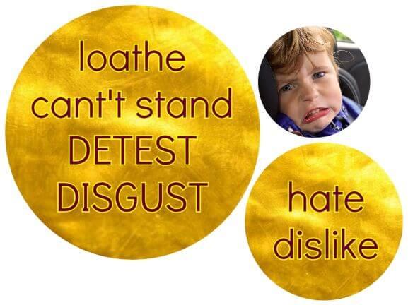 hate sinonims